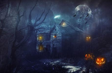 RE blogdog Halloween Theme